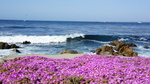 Pacific Grove, CA by Charles S. Colgan