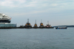 Complex Marine Economy in U.S. Harbors by Charles S. Colgan