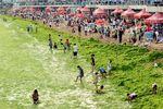 Algal Bloom on China's Coasts